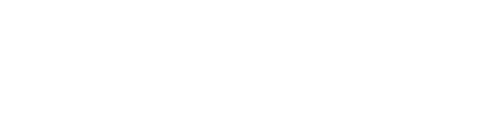 Quantum Search Partners